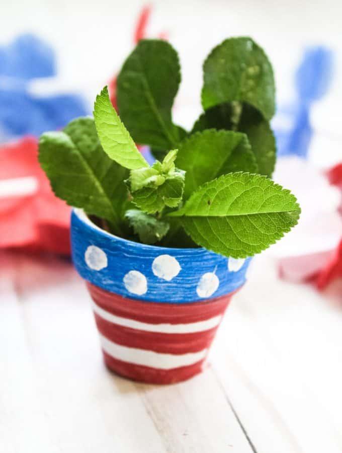 Patriotic Painted Flower Pot