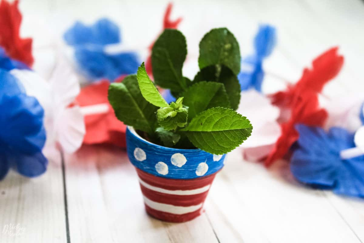 4th of july craft for kids -  Painted Flower Pot